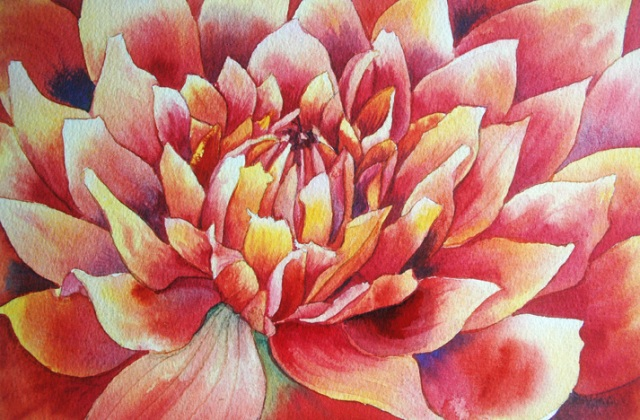 Study of Jamie's Dahlia, 8x11, watercolor, ©2012 Helen Klebesadel